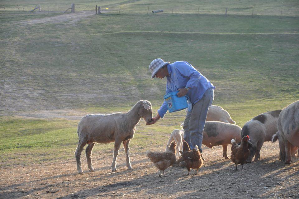 Barcoo's Farmstays Bathurst | Photos of Barcoos Farmstays Bathurst 5