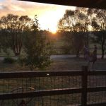 Barcoo's Farmstays Bathurst | Photos of Barcoos Farmstays Bathurst 4