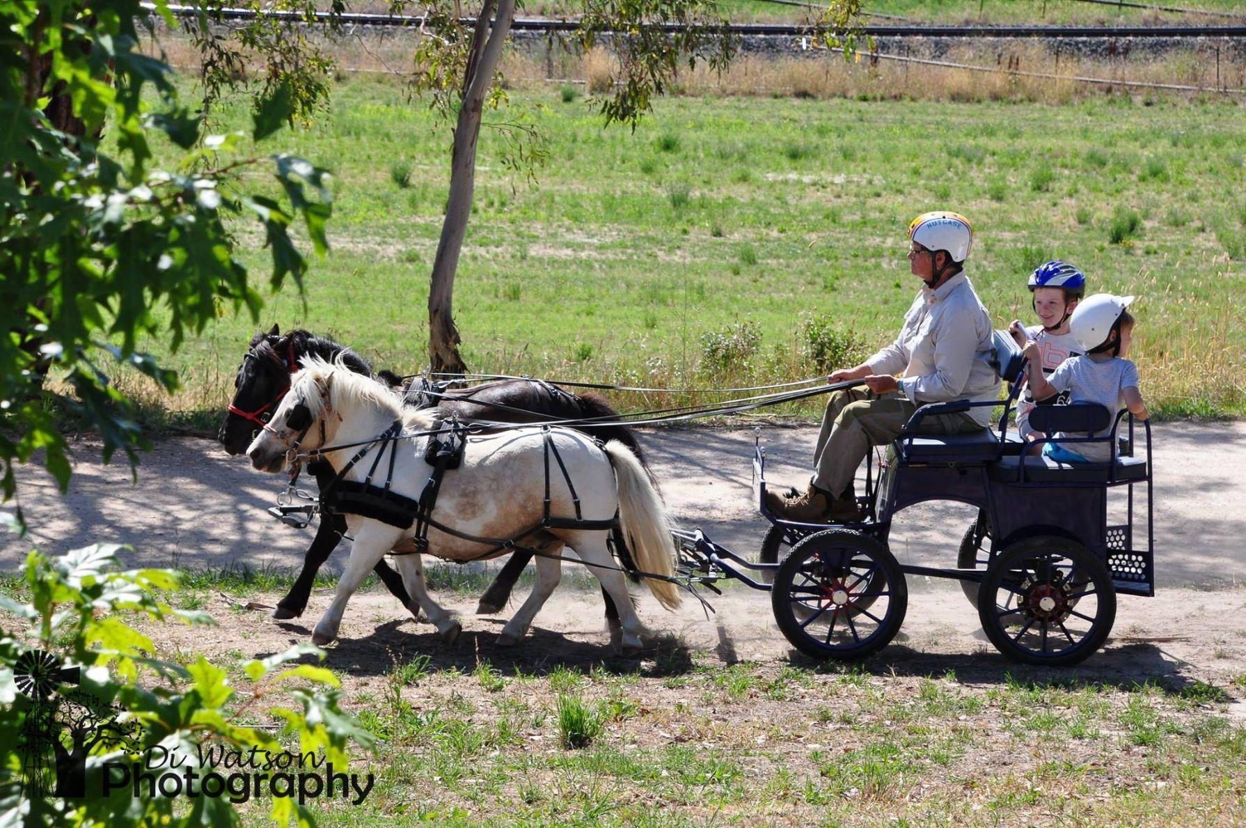 Barcoo's Farmstays Bathurst | Photos of Barcoos Farmstays Bathurst 11